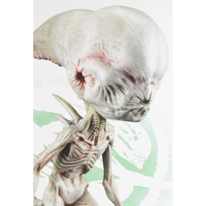 Alien Covenant Neomorph Bobble Head