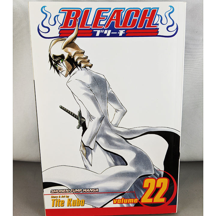 Bleach Vol 22