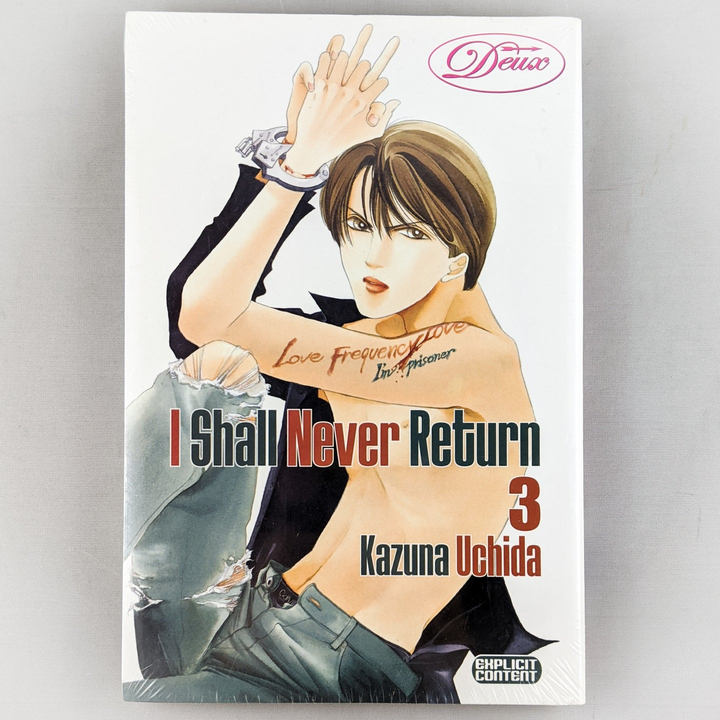 I Shall Never Return Manga Volume 3