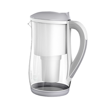EcoBud Gentoo Glass Jug - Live Pure and Simple