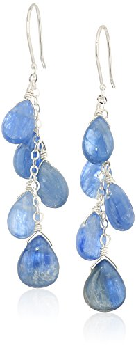 Kyanite Pear Shape Bead with Sterling Silver Chain and Ear Wire Drop Earrings