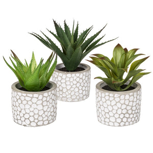 Set of 3 Artificial Succulent Plants