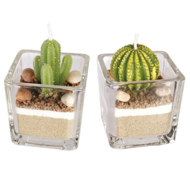 2 Decorative Cactus Plant Candles