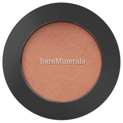 BOUNCE & BLUR POWDER BLUSH