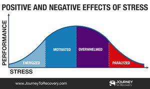 Infographic - Positive and Negative Effects of Stress