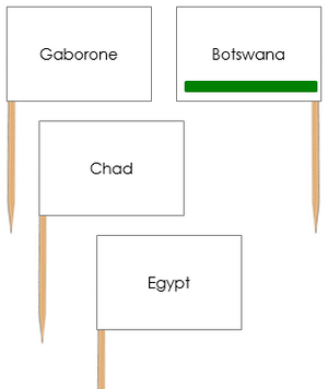African Capital Cities Pin Flags - Montessori geography materials