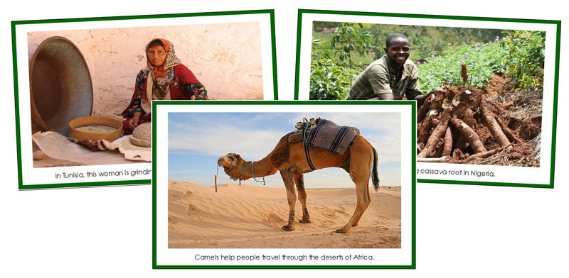Africa Continent Cards (borders) - Montessori Print Shop geography cards