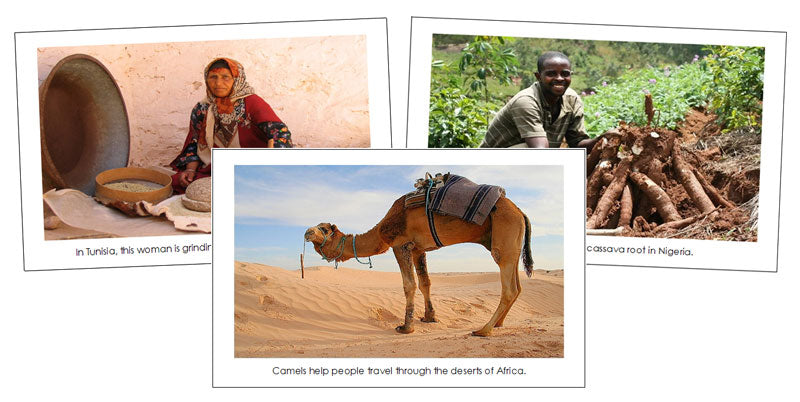 Africa Continent Cards - Montessori Print Shop geography cards