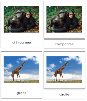 African Animals - Montessori Print Shop