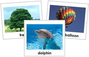 Air, Land, & Water Toddler Cards - Montessori Print Shop