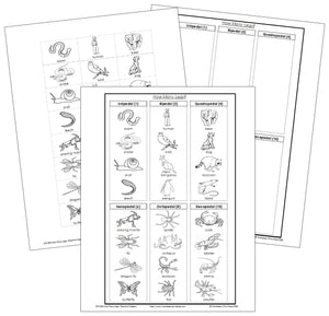 Animals: How Many Legs? (Blackline masters) - Montessori Print Shop
