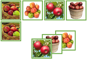apple matching cards - Montessori Print Shop