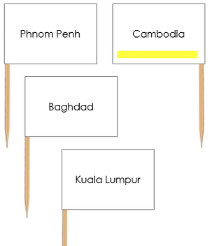 Asian Capital Cities Pin Flags - Montessori geography materials
