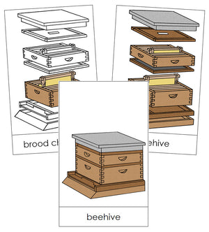 Beehive Nomenclature Cards - Montessori Print Shop