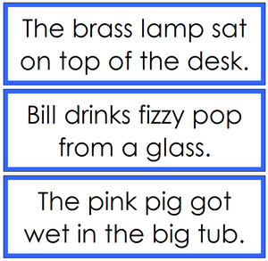 Blue Sentence Cards Set 2 - Montessori language cards