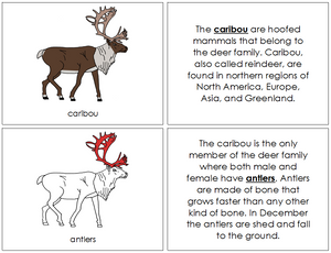 Caribou Nomenclature Book (red) - Montessori Print Shop