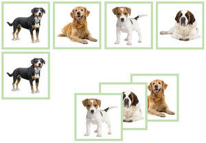 dog matching cards - Montessori Print Shop