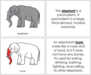 Elephant Nomenclature Book (red) - Montessori Print Shop