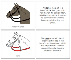 English Bridle Nomenclature Book - Montessori Print Shop