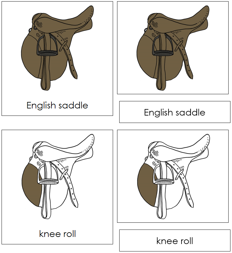 English Saddle Nomenclature Cards - Montessori Print Shop