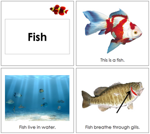 Fish Book - Toddler - Montessori Print Shop