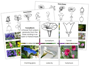 Flower Shapes - Montessori Print Shop