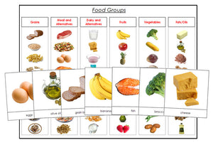 Food Groups - Montessori Print Shop - health materials