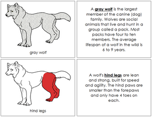 Gray Wolf Nomenclature Book (red) - Montessori Print Shop
