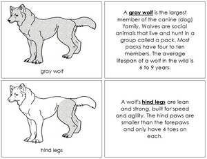 Gray Wolf Nomenclature Book - Montessori Print Shop