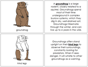 Groundhog Nomenclature Book - Montessori Print Shop