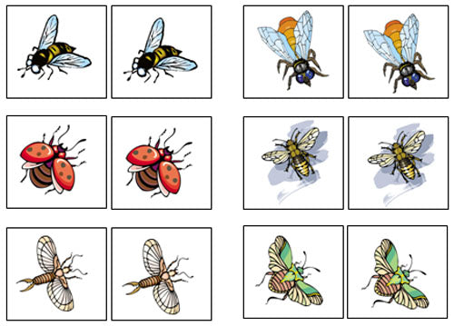 Insect Match-Up & Memory Game - Montessori Print Shop