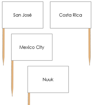 North American Capital Cities Pin Flags