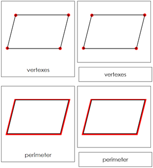 Study of a Parallelogram Cards - Montessori geometry