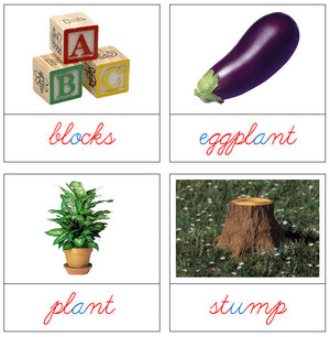 Phonetic Picture Cards Level 2 (cursive) - Montessori Print Shop