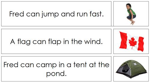 Phonetic Sentence Cards - Montessori language cards