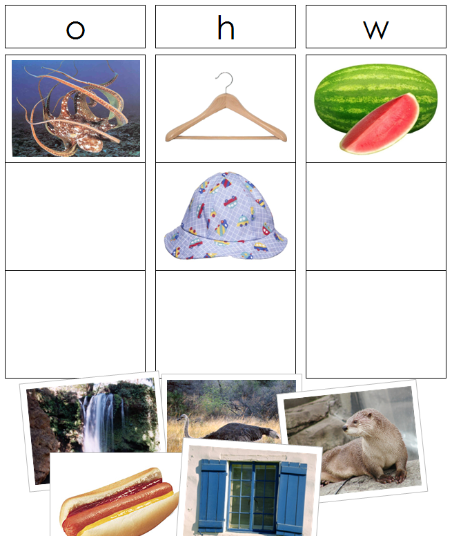 Phonics Sound & Picture Sorting Cards & Charts - Montessori Print Shop
