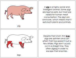 Pig Nomenclature Book (red) - Montessori Print Shop