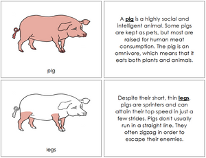 Pig Nomenclature Book - Montessori Print Shop