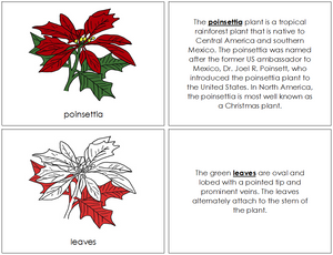 Poinsettia Nomenclature Book (red) - Montessori Print Shop