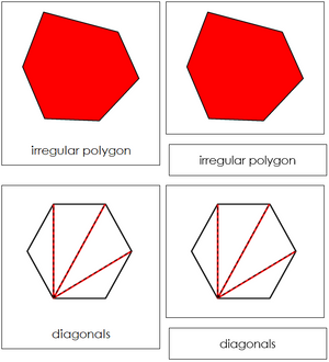 Study of a Polygon Cards - Montessori geometry