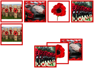 Remembrance Day matching cards - Montessori Print Shop