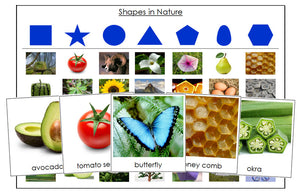Shapes in Nature Sorting Cards - Montessori Print Shop