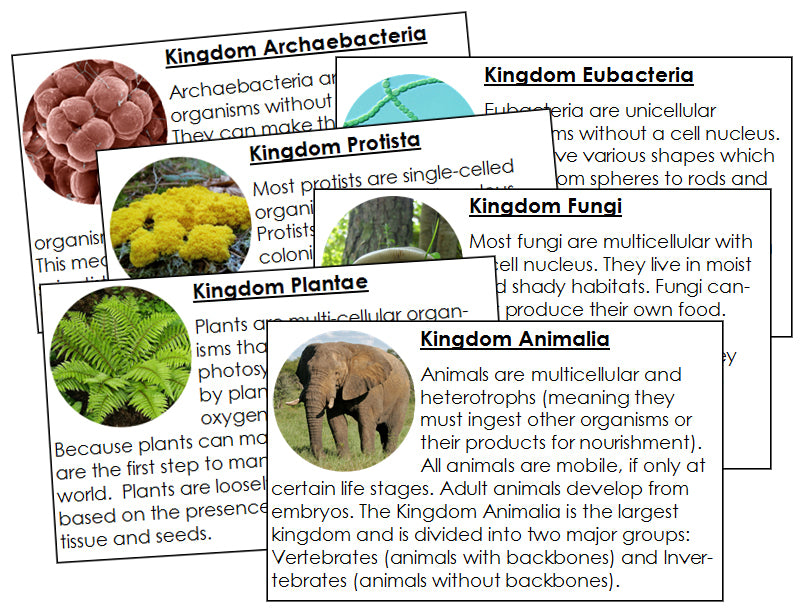 Six Kingdoms of Life Information Cards - Montessori Print Shop