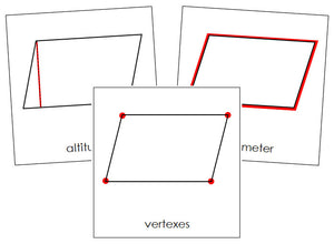 Study of a Parallelogram Cards - Montessori Print Shop geometry cards