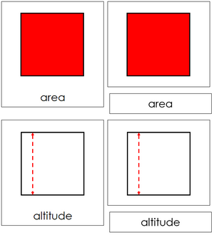Study of a Square 3-Part Cards - Montessori geometry