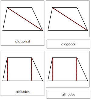 Study of a Trapezoid Cards - Montessori geometry