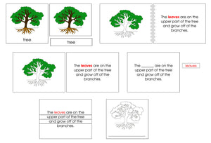 Tree Definition Set - Montessori Print Shop nomenclature