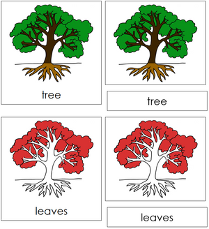 Tree Nomenclature Cards - Montessori Print Shop