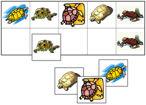 Turtle Match-Up & Memory Game - Montessori Print Shop