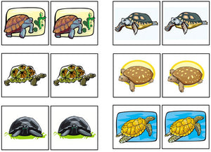 Turtle Match-Up & Memory - Montessori Print Shop
